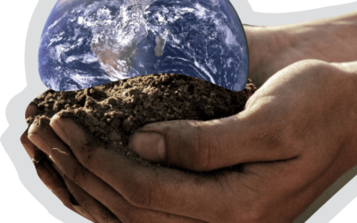 Introducing GroundUp.Earth – the problem solving platform for Farming and the Food Industry